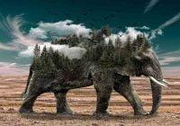 Arti mimpi gajah