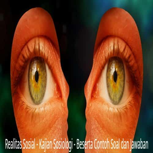Realitas sosial sosiologi