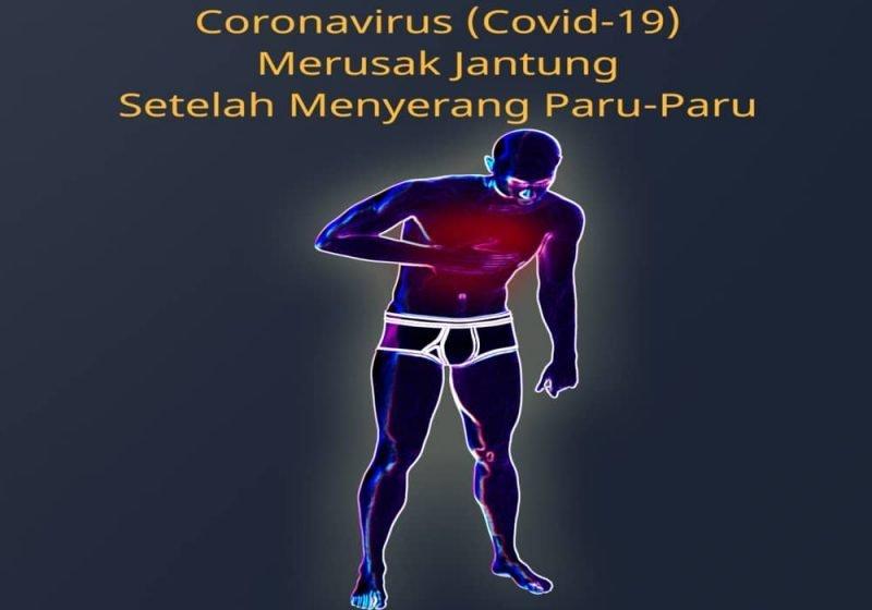 Coronavirus merusak jantung setelah menyerang paru