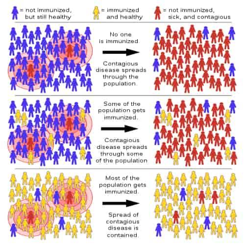 Herd immunity adalah kekebalan kelompok