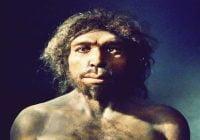 Manusia purba homo antecessor