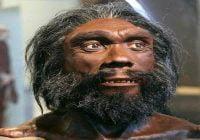 Homo heidelbergensis manusia purba