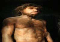 Homo rhodensiensis manusia purba