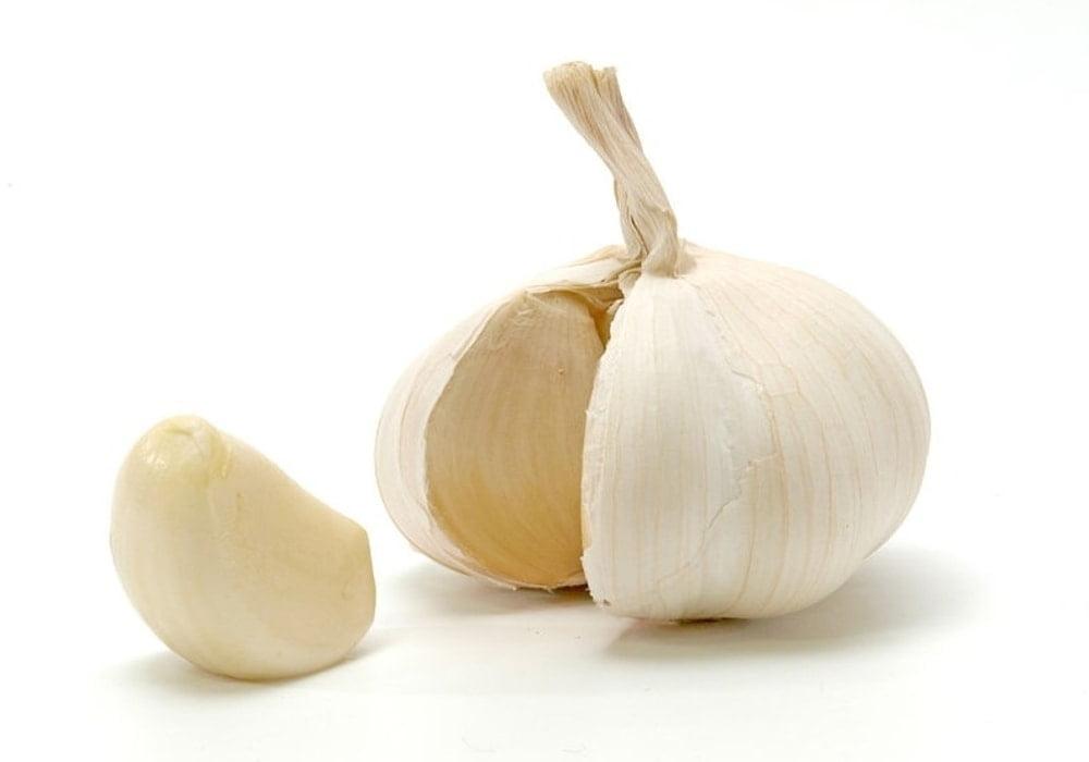 Obat herbal kanker payudara bawang putih