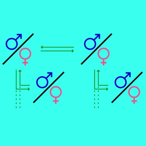 Monogami poligami poligini poliandri