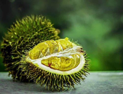 Arti Mimpi Durian