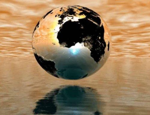 Hewan Paling Banyak di Bumi – 10 Hewan Terpadat di Dunia