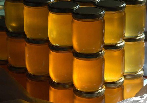Manfaat madu bagi kesehatan