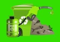 Energi biofuel