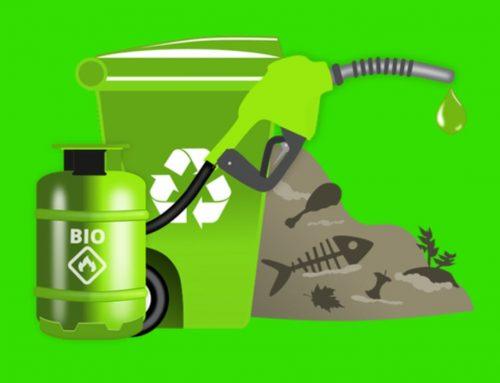 Biofuel – Bahan Bakar Hayati Biofuel Generasi 1-4 dan Contohnya