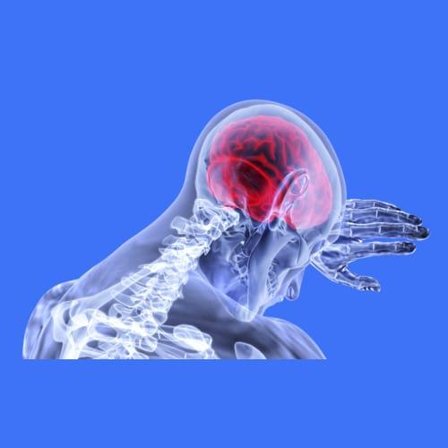 Ensefalitis (Encephalitis) Radang Otak Akut dan Eastern Equine Encephalitis (EEE) - Gejala, Penyebab, Diagnosa, Pengobatan, Pencegahan