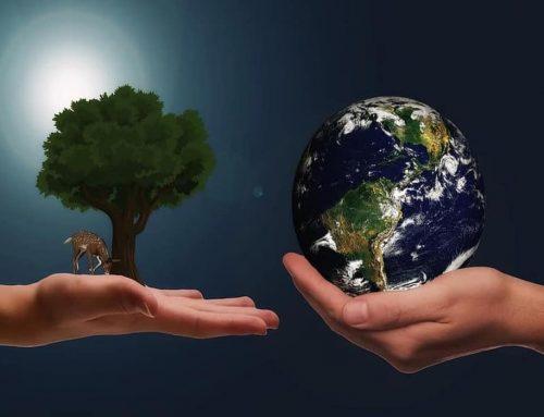 Sumber Daya Alam – Apa Saja? – Penjelasan, Jenis,  Contoh dan Pemanfaatan