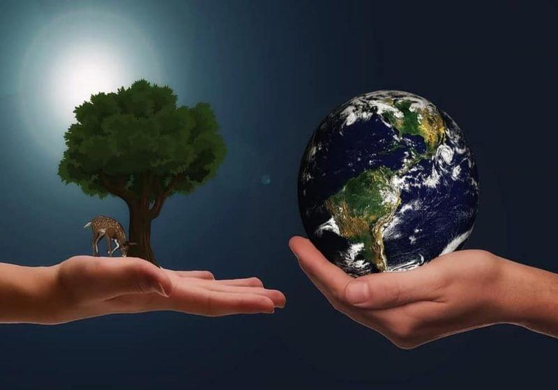 Sumber Daya Alam - Apa Saja? - Penjelasan, Jenis, Contoh dan Pemanfaatan