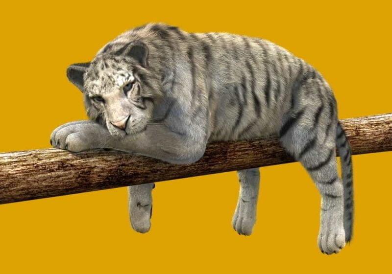 Arti mimpi harimau