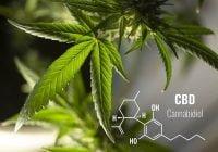 Cbd oil kanabidiol