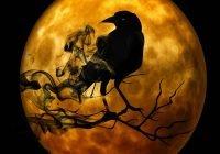 Arti mimpi burung gagak