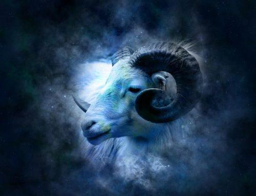 Zodiak Aries | Karakter dan Kepribadian Tanda Astrologi dan Horoskop