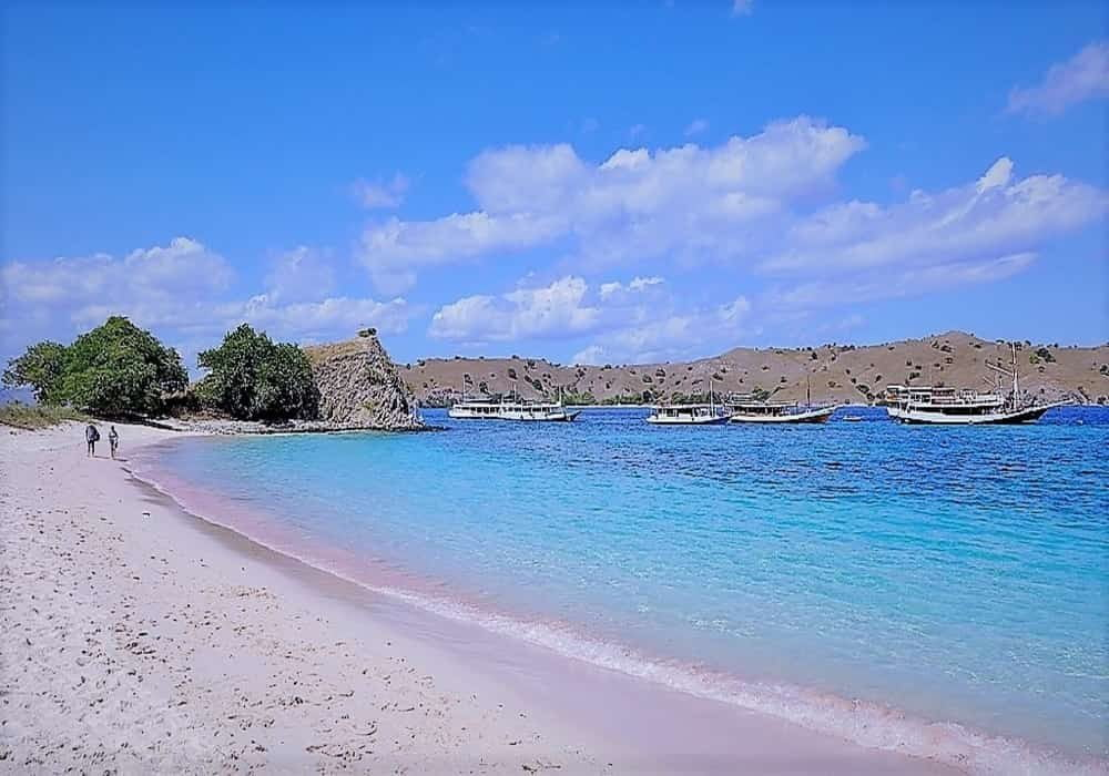 Pantai pasir pink di Pulau Komodo