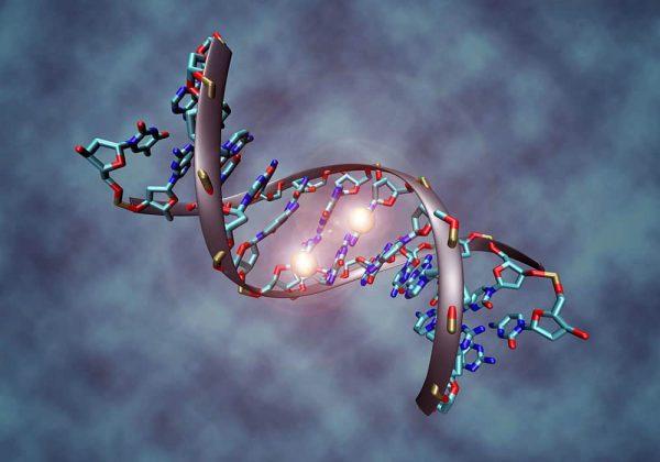 Tes Gen Onkogenetika - Tes DNA memprediksi kanker tertentu