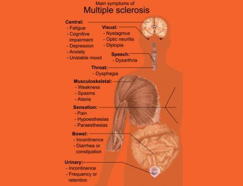 Multiple Sclerosis (Sklerosis multipel) penyakit berpotensi melumpuhkan otak dan saraf sumsumtulang belakang