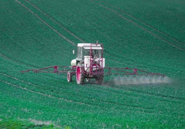 Bahaya Residu Pestisida Pada Makanan   Dalam buah-buahan, sayuran dan beberapa aspek kesehatan
